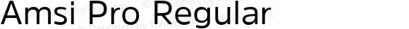 Amsi Pro Regular Version 1.41
