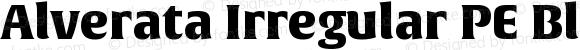 Alverata Irregular PE Black Version 1.001