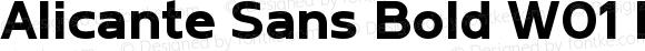 Alicante Sans Bold W01 Regular Version 1.00