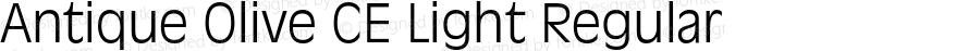 Antique Olive CE Light Regular 002.000