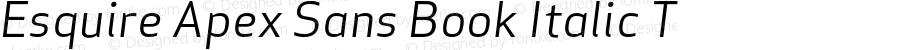 Esquire Apex Sans Book Italic T 005.000