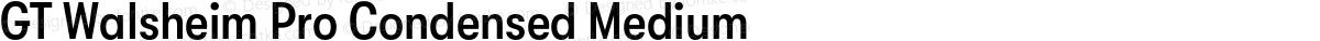 GT Walsheim Pro Condensed Medium