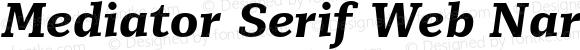 Mediator Serif Web Narrow Extra Bold Italic