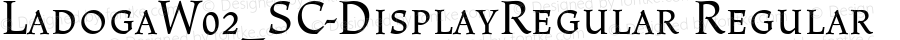 LadogaW02_SC-DisplayRegular Regular Version 1.1