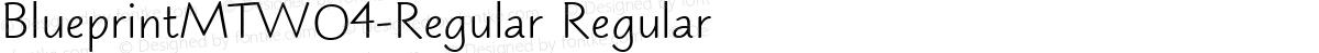 BlueprintMTW04-Regular Regular