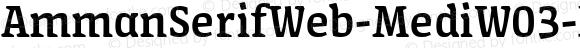 AmmanSerifWeb-MediW03-Rg Regular Version 7.504