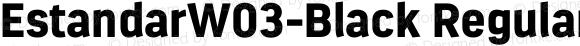EstandarW03-Black Regular