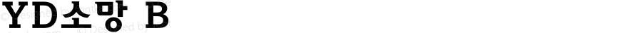 YD소망 B Version 3.4; 빌드 20120415