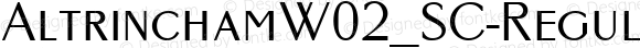 AltrinchamW02_SC-Regular Regular Version 1.1