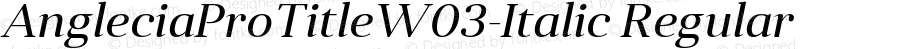 AngleciaProTitleW03-Italic Regular Version 1.00