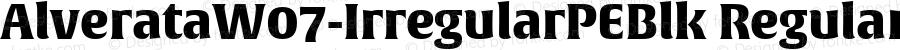 AlverataW07-IrregularPEBlk Regular Version 1.000