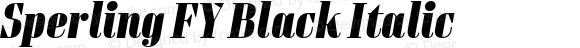 Sperling FY Black Italic