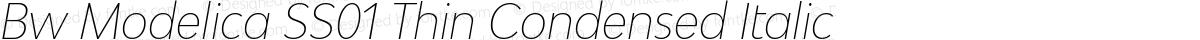 Bw Modelica SS01 Thin Condensed Italic