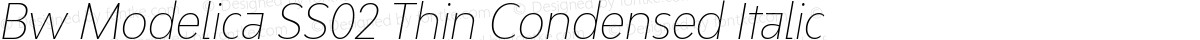 Bw Modelica SS02 Thin Condensed Italic