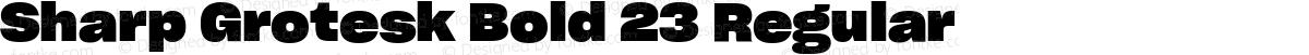 Sharp Grotesk Bold 23 Regular