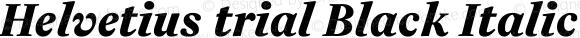 Helvetius trial Black Italic