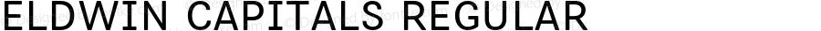 Eldwin Capitals Regular Version 1.001;PS 001.001;hotconv 1.0.88;makeotf.lib2.5.64775