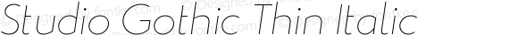 Studio Gothic Thin Italic
