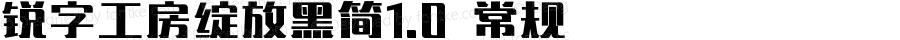 锐字工房绽放黑简1.0 常规 Version 1.0  www.reeji.com QQ:2770851733 Mail:Reejifont@outlook.com REEJI锐字家族 上海锐线创意设计有限公司