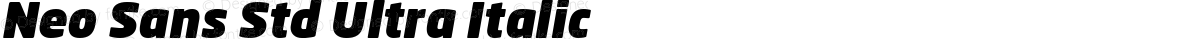 Neo Sans Std Ultra Italic