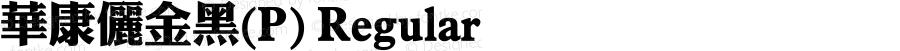 華康儷金黑(P) Regular 1 July., 2000: Unicode Version 2.00