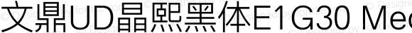 文鼎UD晶熙黑体E1G30 Medium Version 1.00