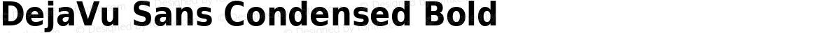 DejaVu Sans Condensed Bold