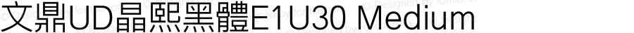 文鼎UD晶熙黑體E1U30 Medium Version 1.30