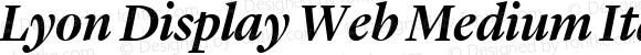 Lyon Display Web Medium Italic Version 001.000 2010