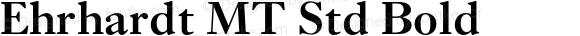 Ehrhardt MT Std Bold Version 1.004;PS 001.003;Core 1.0.38;makeotf.lib1.6.5960
