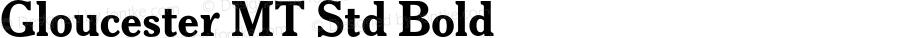 Gloucester MT Std Bold Version 1.000;PS 001.000;hotconv 1.0.38