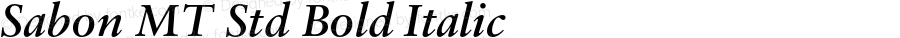 Sabon MT Std Bold Italic Version 1.003;PS 001.001;Core 1.0.38;makeotf.lib1.6.5960