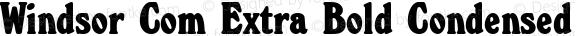 Windsor Com Extra Bold Condensed