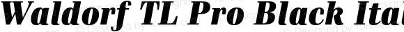 Waldorf TL Pro Black Italic