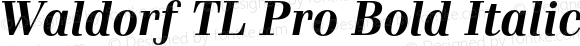 Waldorf TL Pro Bold Italic