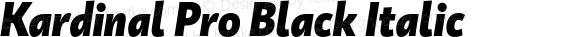Kardinal Pro Black Italic