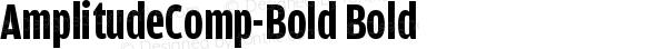 AmplitudeComp-Bold Bold Version 001.000
