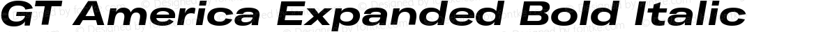 GT America Expanded Bold Italic