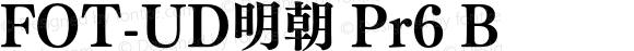 FOT-UD明朝 Pr6 B