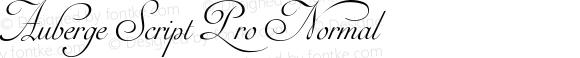 Auberge Script Pro Normal