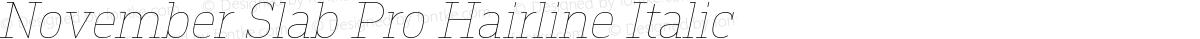 November Slab Pro Hairline Italic