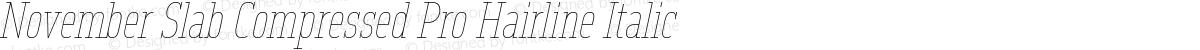 November Slab Compressed Pro Hairline Italic