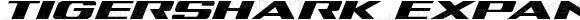 Tigershark Expanded Italic Expanded Italic Version 2.0; 2018