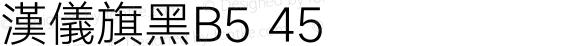 漢儀旗黑B5 45
