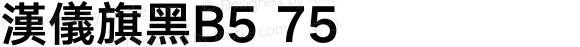 漢儀旗黑B5 75