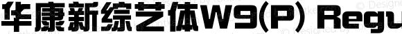 华康新综艺体W9(P)