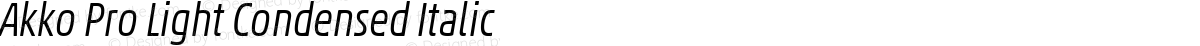 Akko Pro Light Condensed Italic