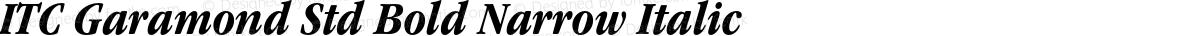 ITC Garamond Std Bold Narrow Italic