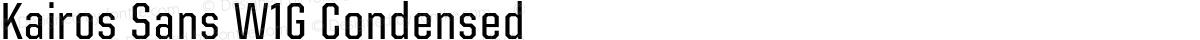 Kairos Sans W1G Condensed