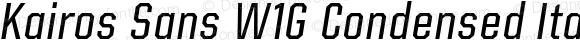 Kairos Sans W1G Condensed Italic
